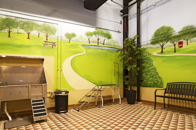 Indoor Dog Park The Grand Wisconsin Apartments