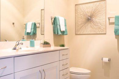 Grand-Wisconsin-Bathroom-1