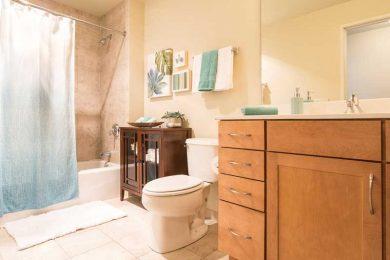 Grand-Wisconsin-Model-Bathroom-1